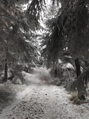 Śnieżna droga na Kopę