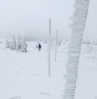 Tyczki, najlepszy zimowy ludzki wynalazek