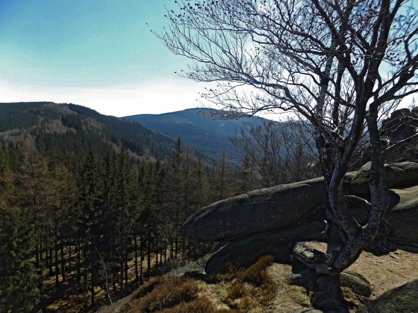 Starościńskie Skały - prawie jak Sokolica