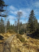 Droga do Fjellhytten to głównie takie mostki.