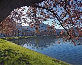Niecodziennie słoneczne Bergen.