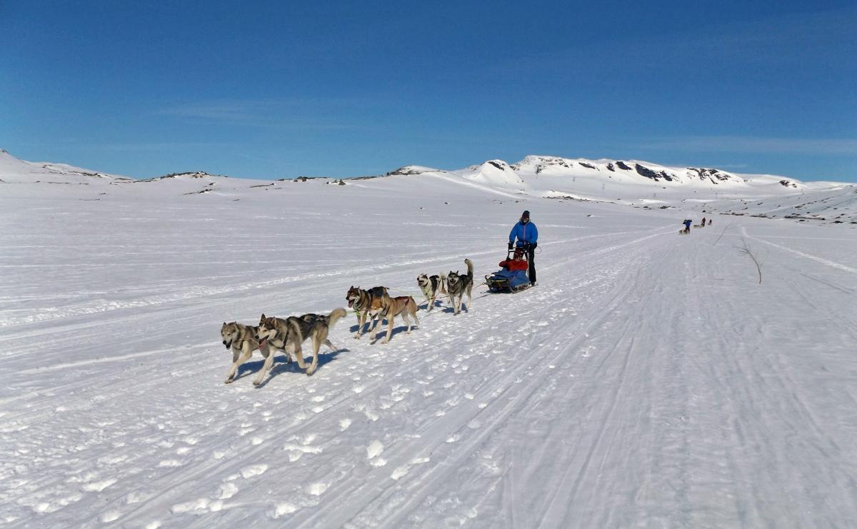 Finse, zimowa niespodzianka na wiosnę