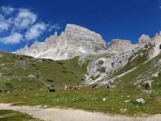 Valle Rimbon, krowia dolina. U góry masyw Paterno.