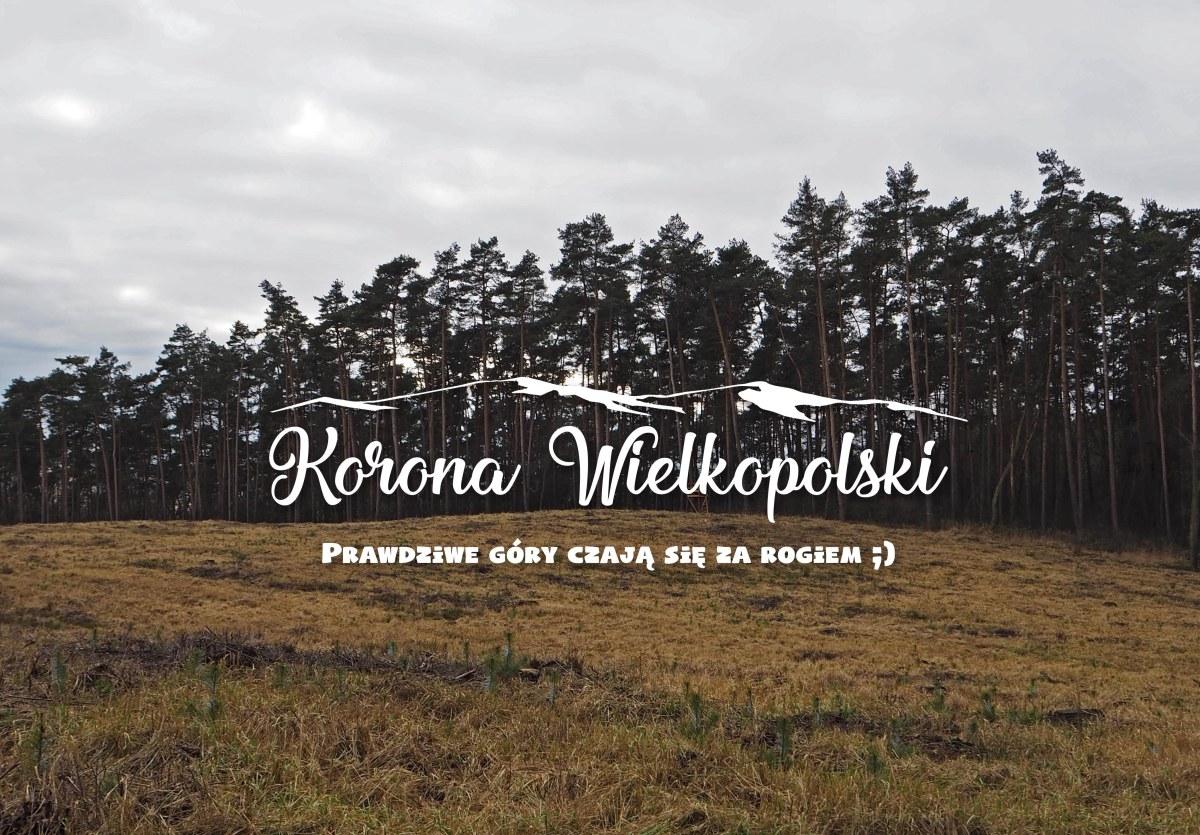 Korona Wielkopolski - Góra Św. Jadwigi