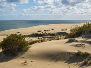 Wydmy Epha - klimat pustynny.