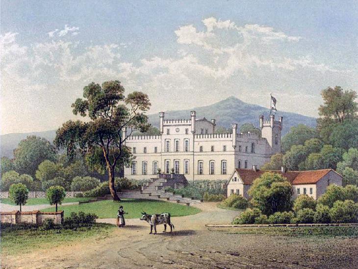 Pałac w Mietkowie na XIX wiecznej litografii.