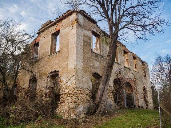 Pozostałości po posiadłości w Maniowie Wielkim.