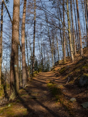Szlak zielony na/z Zamku.