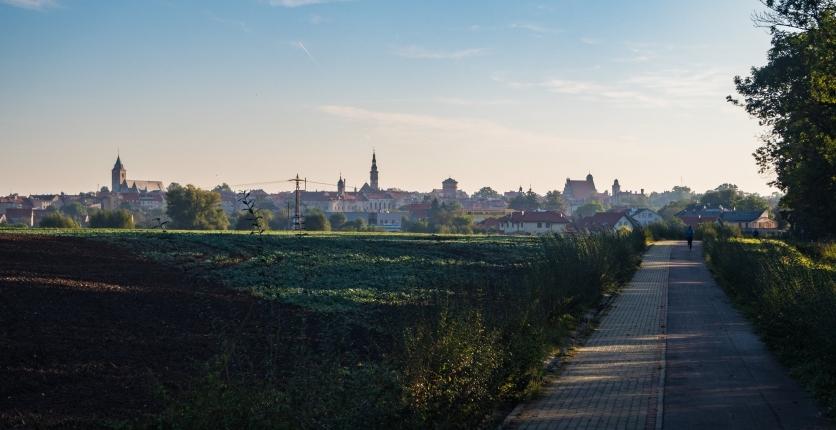 Rzut oka na Jawor ze ścieżki rowerowej prowadzącej do Myśliborza.